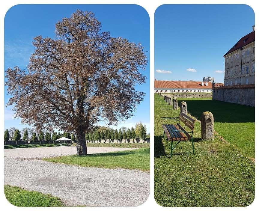 strom_park