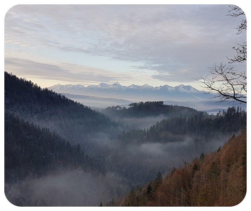 hmla_hory
