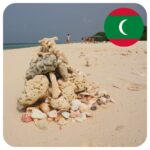 maldivy_musle