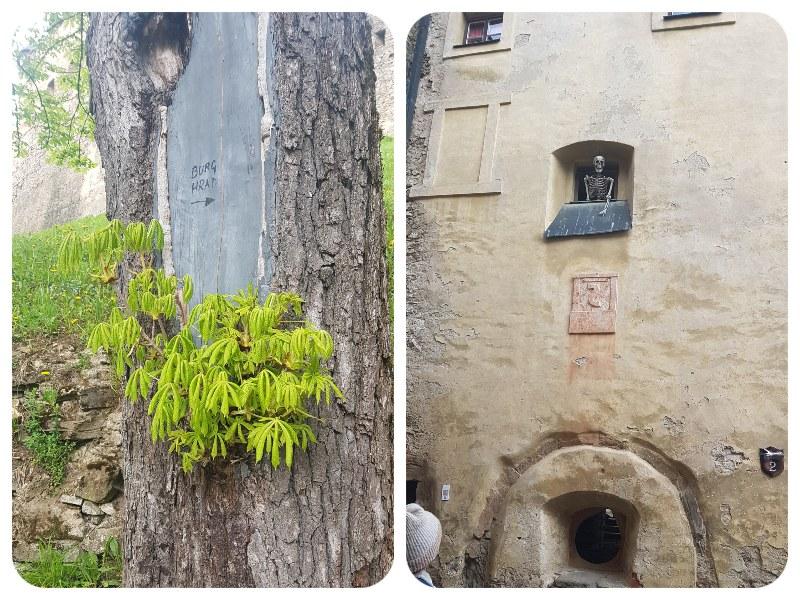 edo_strom