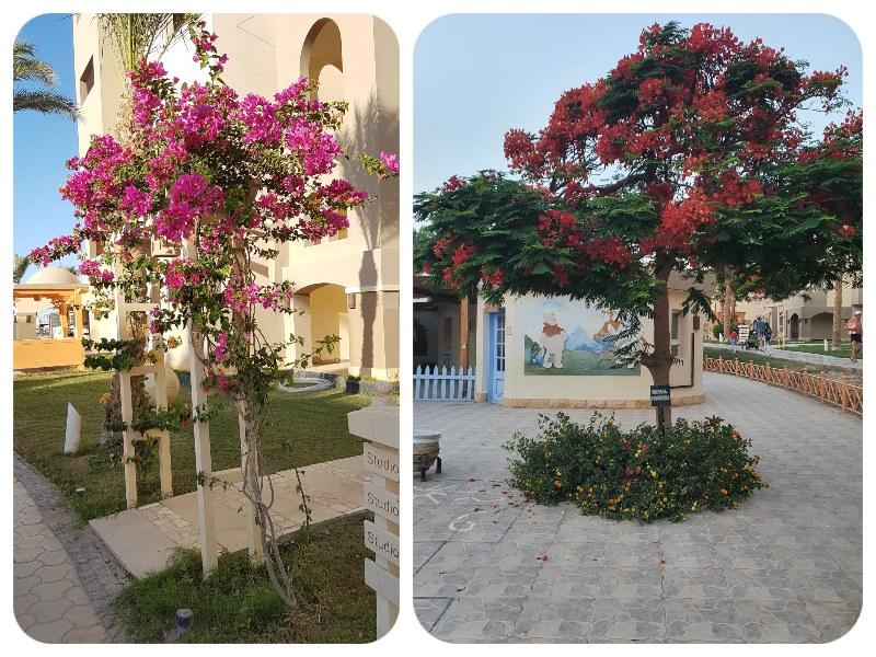 kvety_stromy